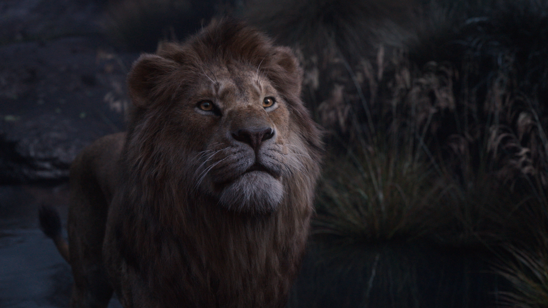 The Lion King 2019 Always Together