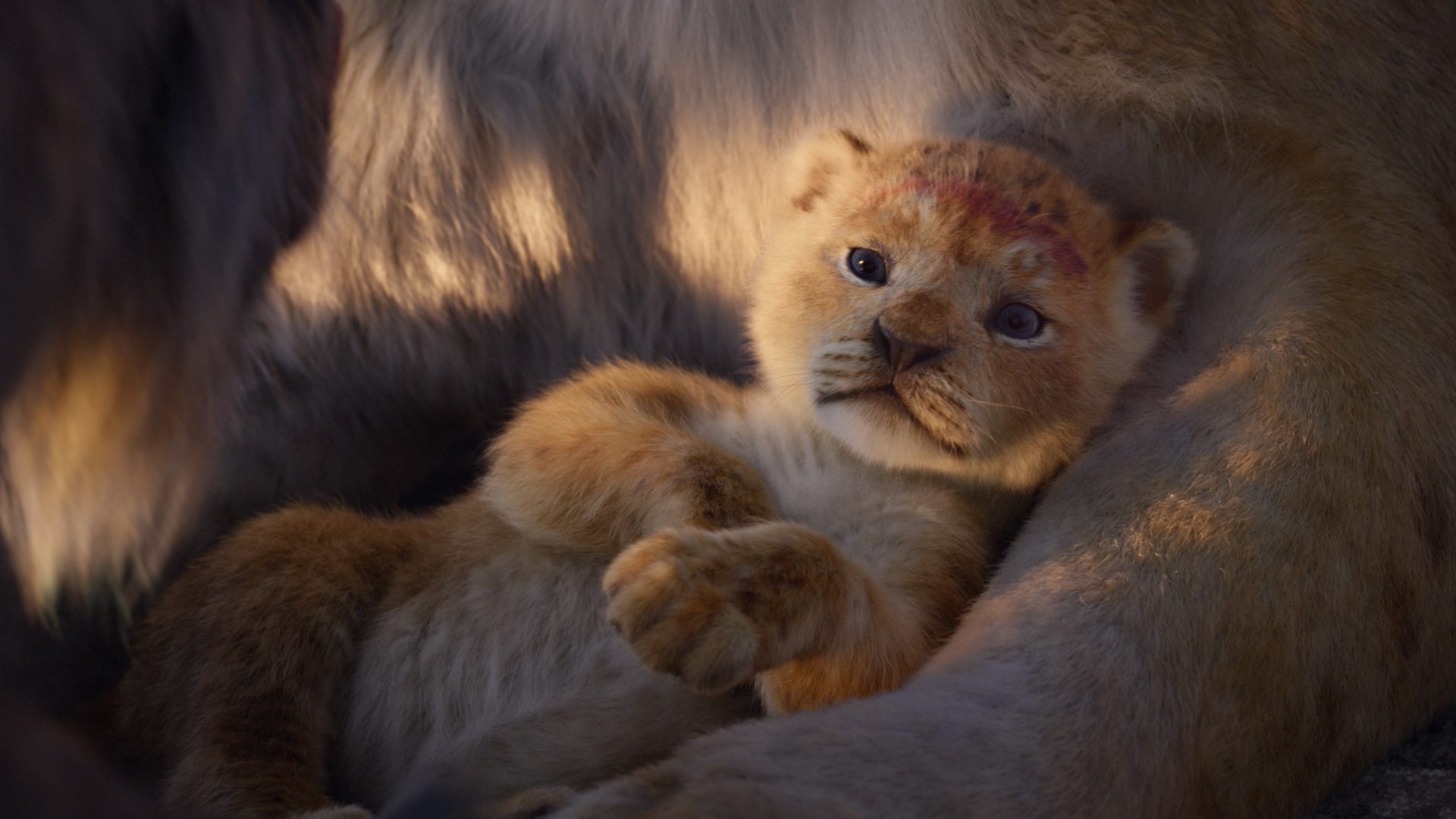 The Lion King 2019 Announce Trailer